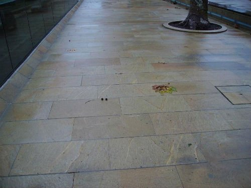 pavimentazione di piastrelle beige e grigie e un'aiuola con un tronco