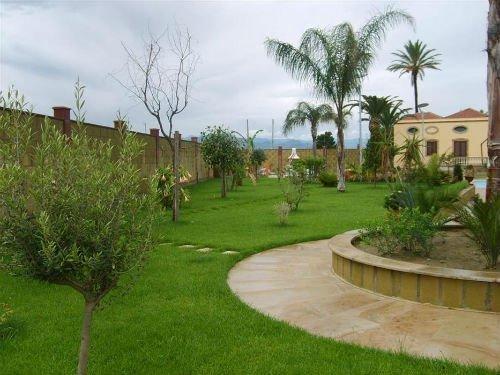 una pavimentazione attorno a un aiuola e un giardino con prato e alberi