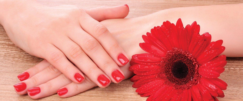 mani femminili con smalto rosso e fiore rosso