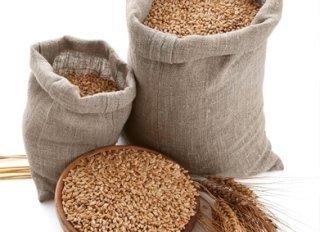 sementi, fave, cereali