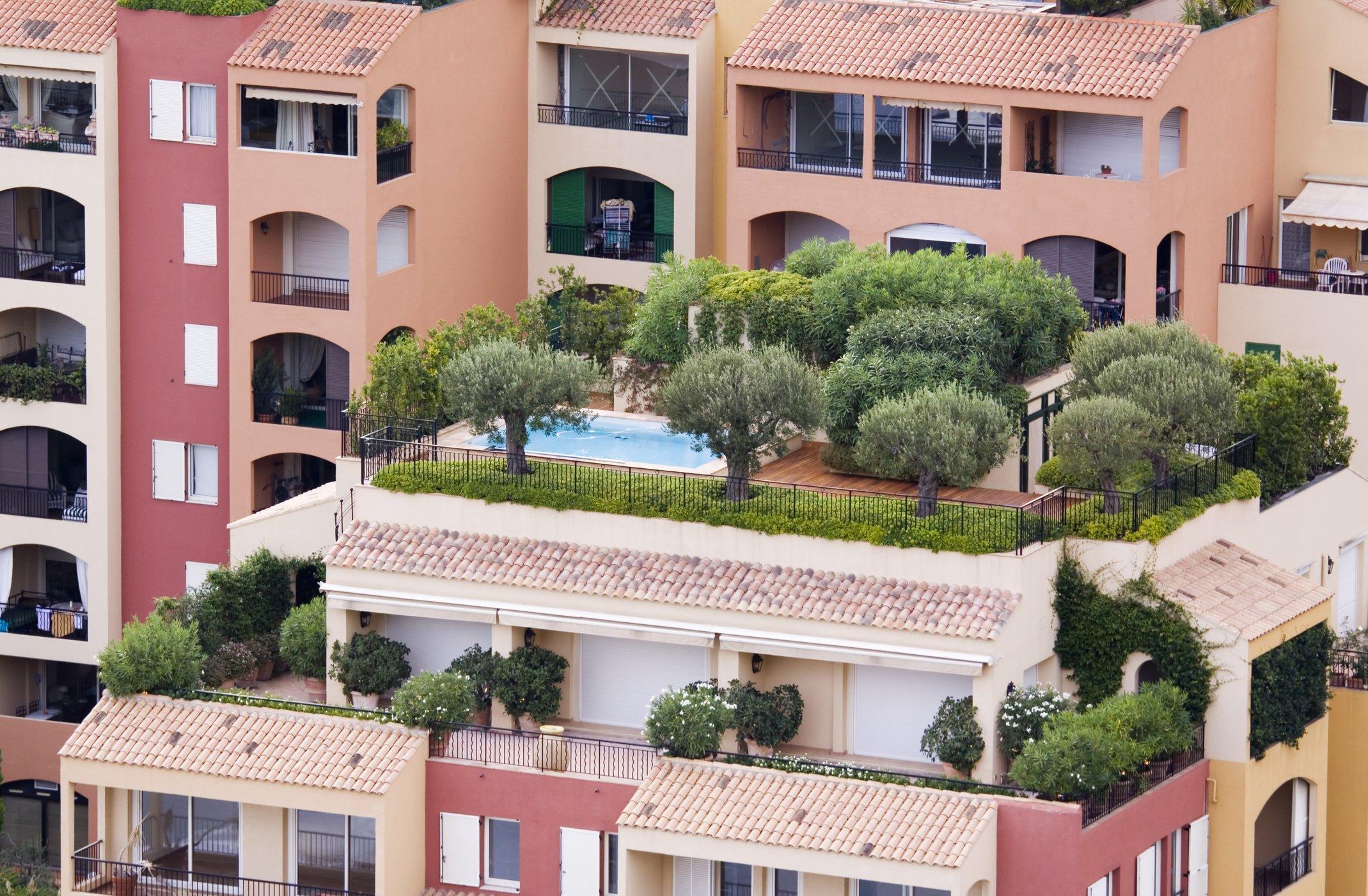 attico con piante e piscina