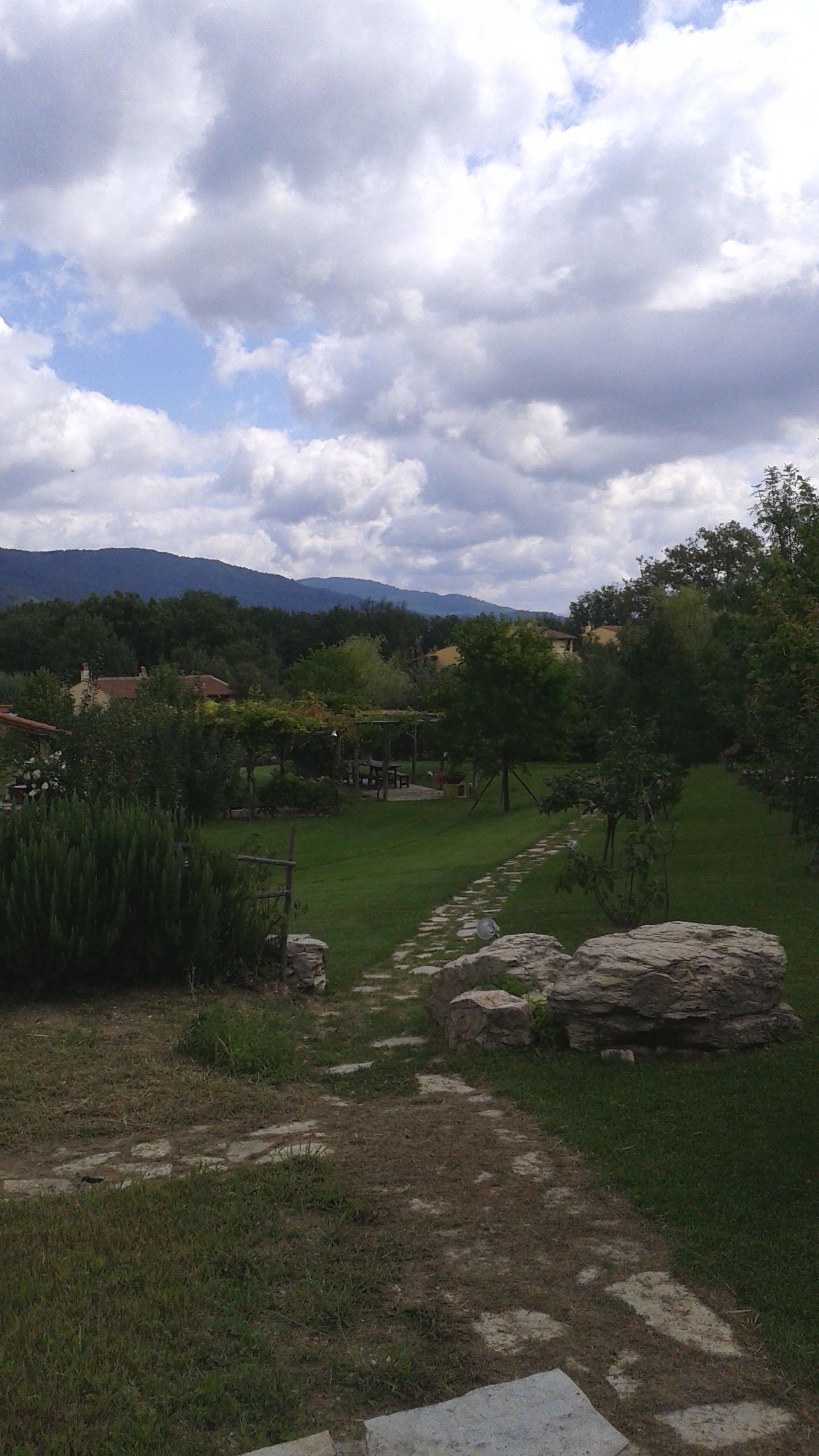 sentiero in pietra all'interno di un grande giardino privato
