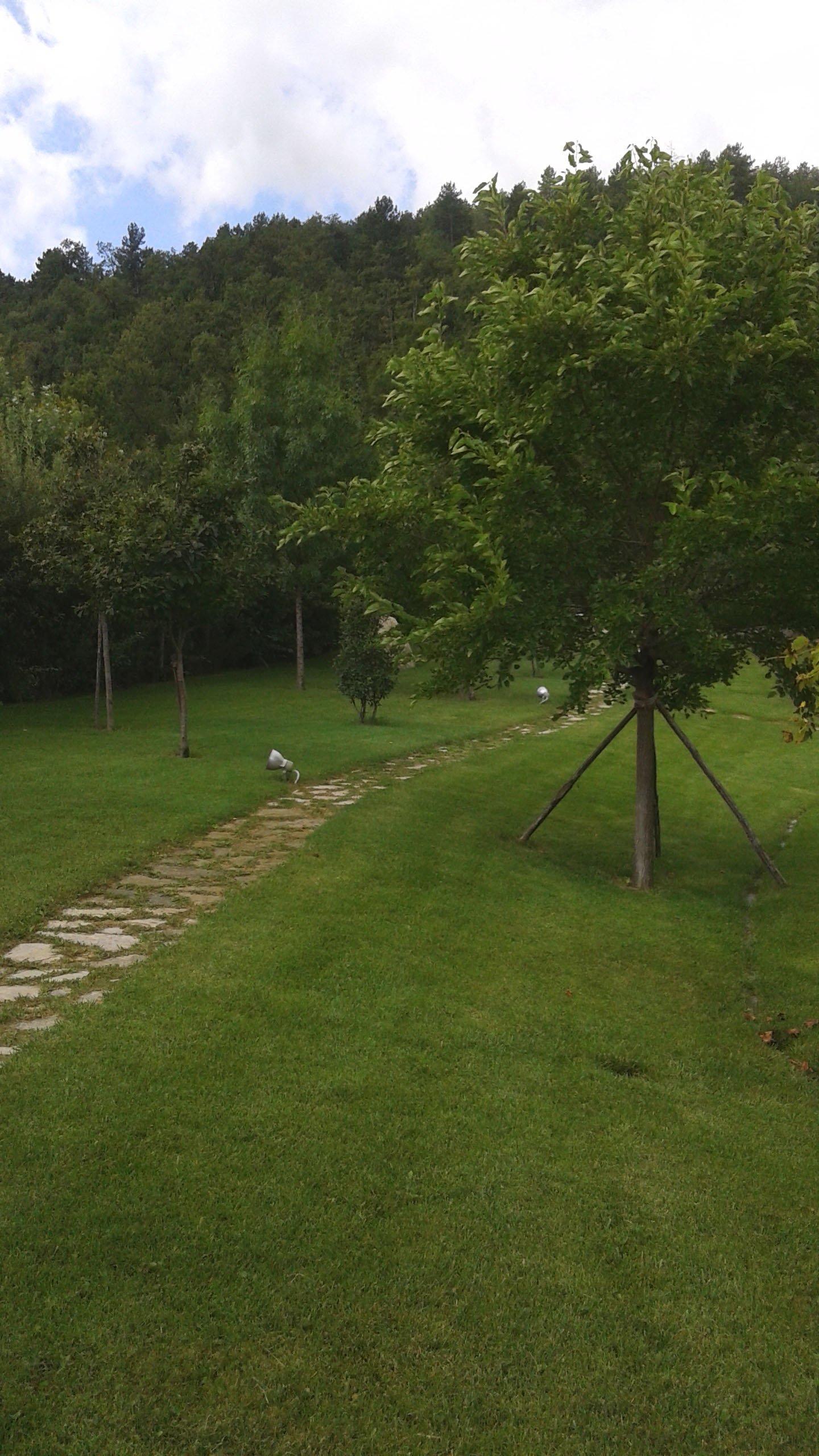 sentiero in pietra ll'interno di giardino privato
