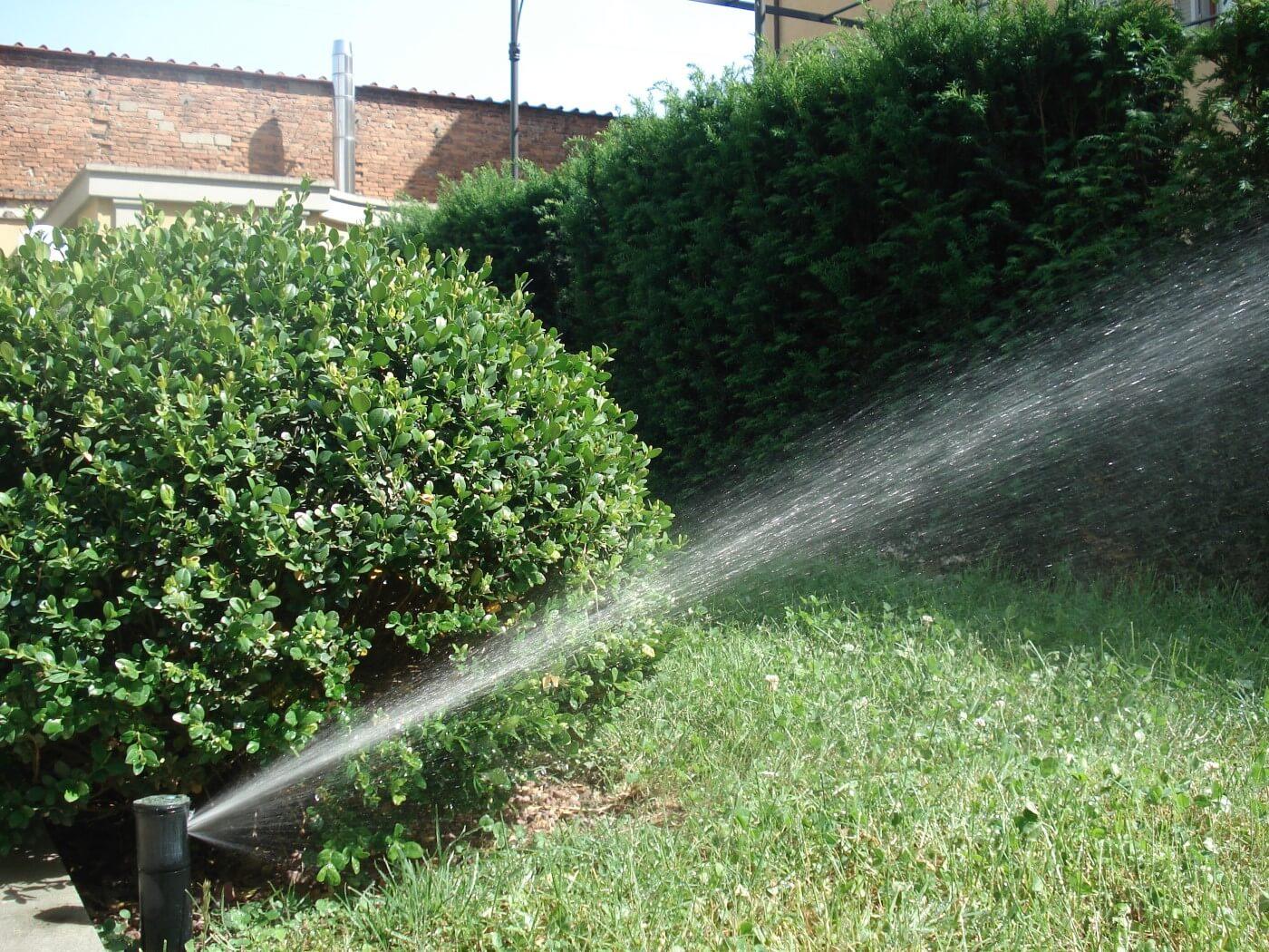 Irrigation of a garden