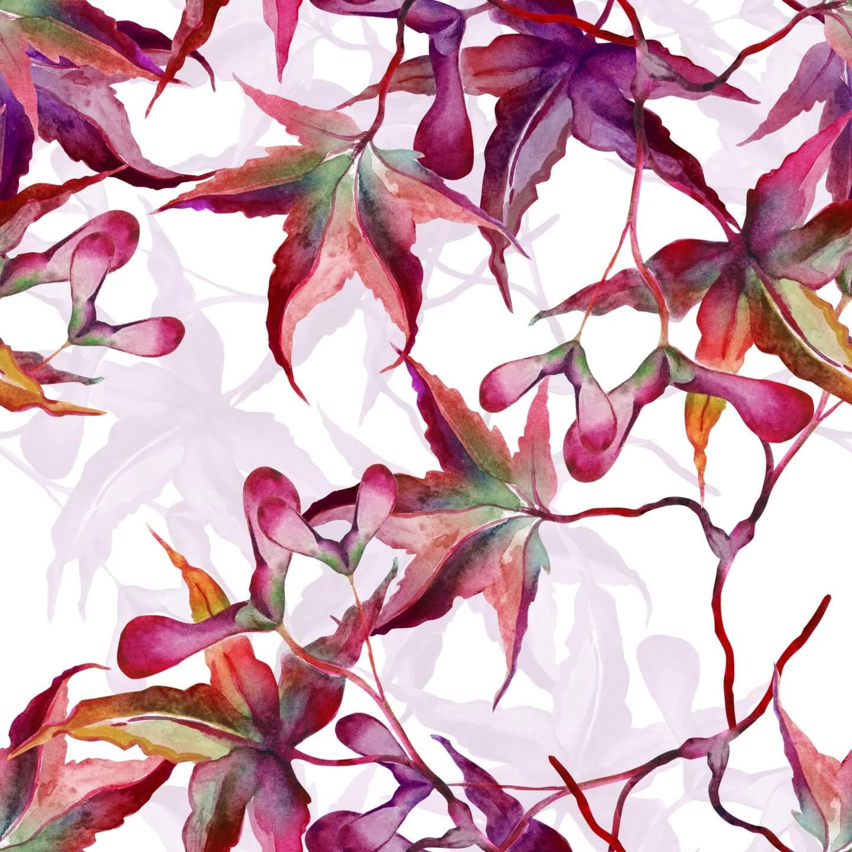 illustrazione floreale foglie