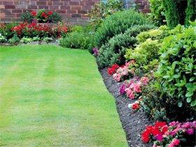 garden landscapeer edgbaston west midland-- adgbaston-landscape -landscaping
