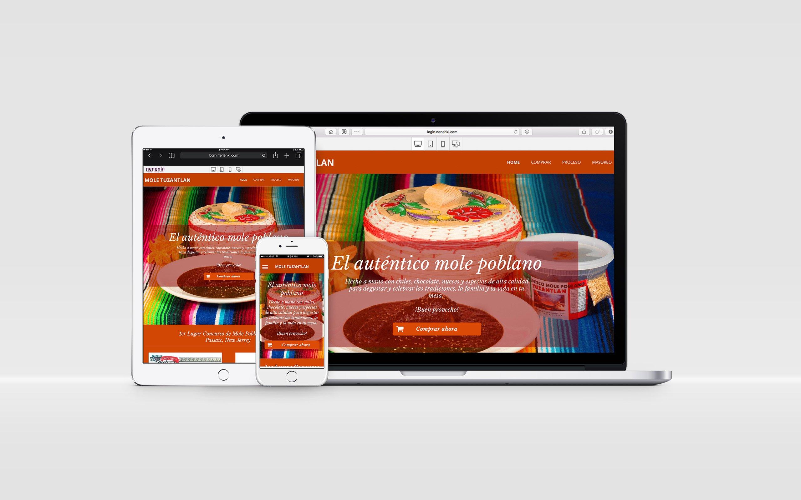 mole-tuzantlan-website-moderno