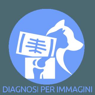 Diagnosi per immagini