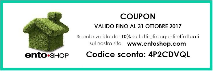 shop shopping entoshop coupon