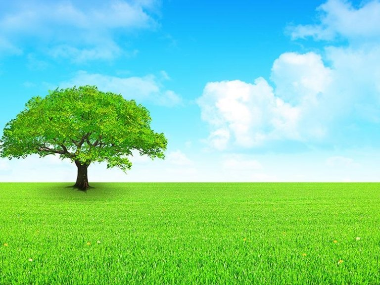 Disinfezione con ozono
