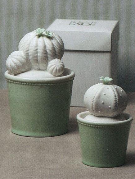 Cactus in ceramica con vasetto verde