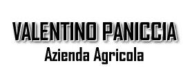 Valentino Paniccia