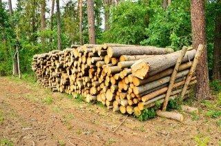 Commercio-legna