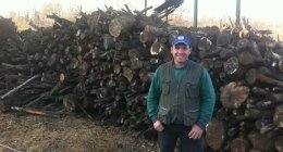 produzione legna da ardere