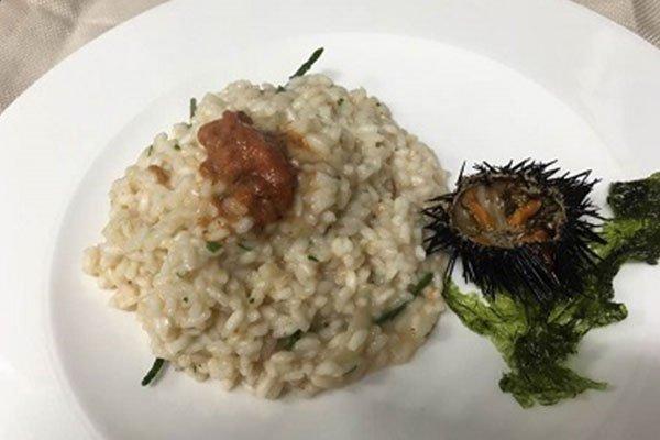 un piatto di risotto al riccio di mare
