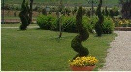giardini in villa