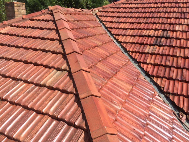 roof recently cleaned