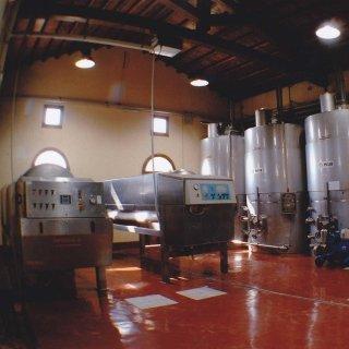 wine-making technologies