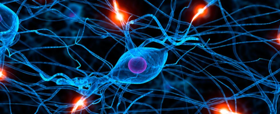 neurologo palermo