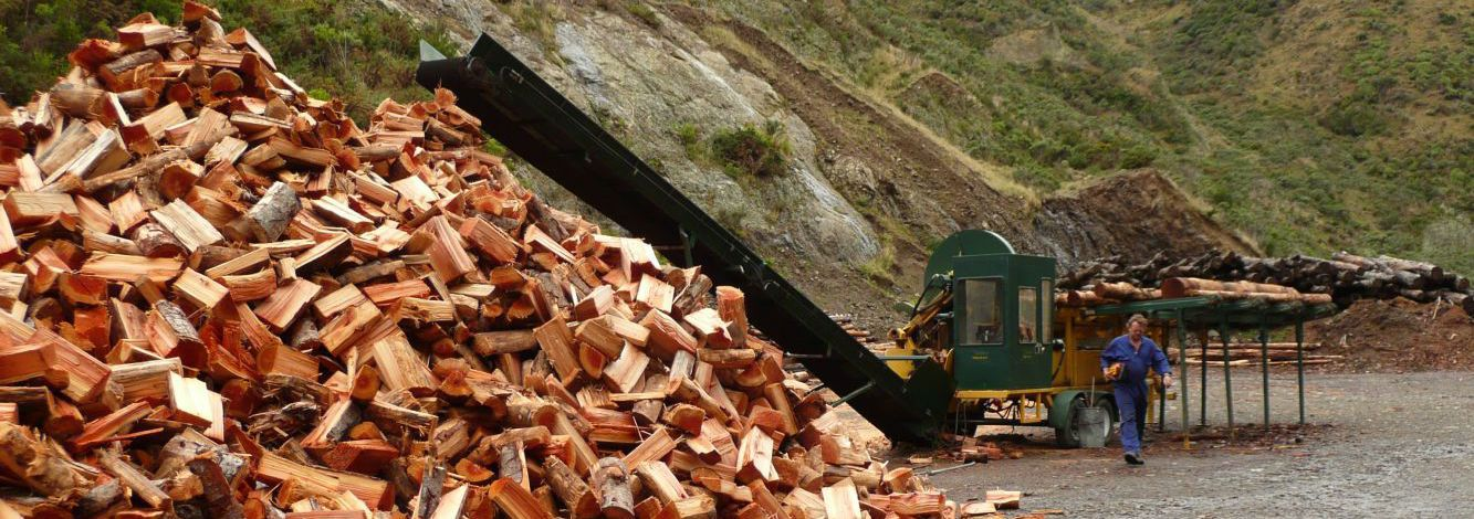 Pile of firewood in Wellington