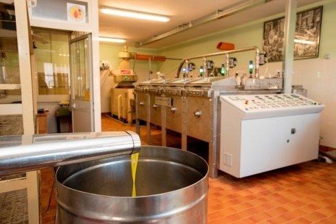 Spremitura delle olive, imbottigliamento olio, olio della sabina, Rieti, Torri in sabina