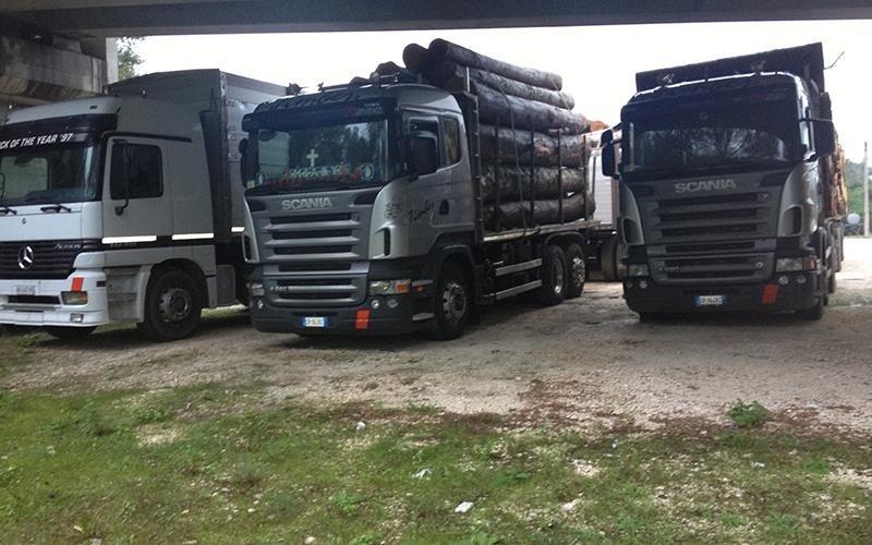 Vendita legname da lavoro