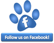 Follow Megacoon on Facebook!