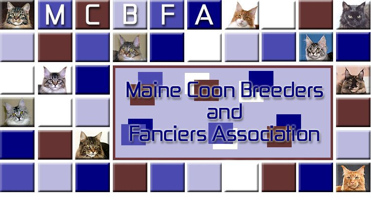 MCBFA - Maine Coon Breeders and Fanciers Association