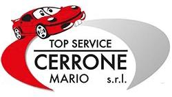 TOP SERVICE - LOGO