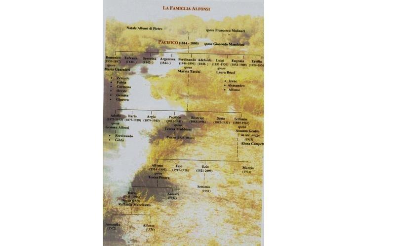 Albero genealogico famiglia Alfonsi lavorazione rame