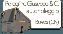 Pellegrino Noleggio Bus - LOGO
