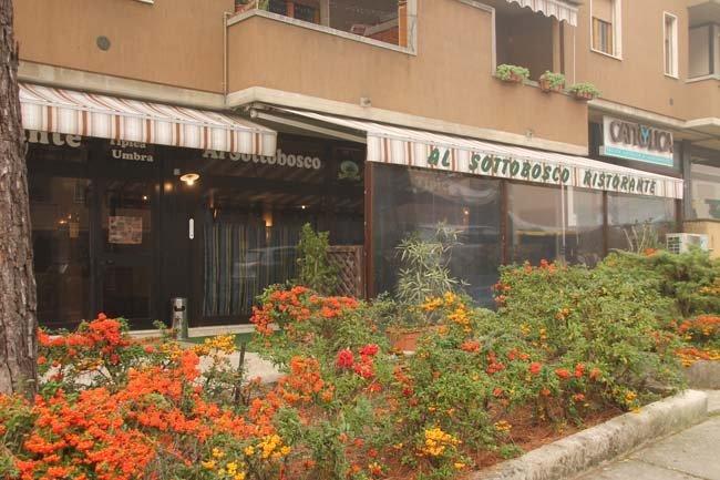 siepe con fiori di fronte ad un ristorante