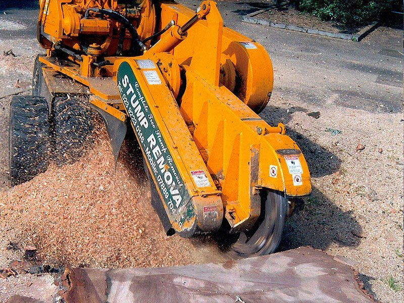 stump grinding experts