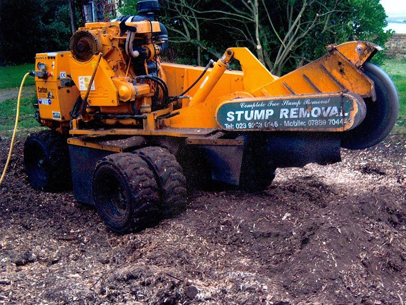 stump removal specialists