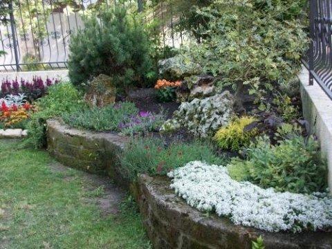 realizzazione di giardino roccioso