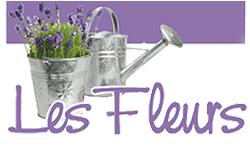 ditta giardinaggio les fleurs