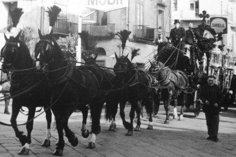 trasporto con cavalli
