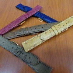 struzzo, braccialetti di volatili, pelle di volatili cinturini