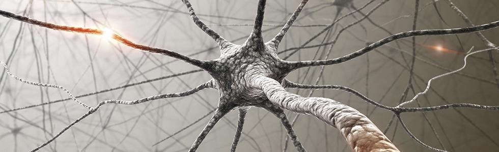 neurologia pordenone