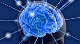 riabilitazione, salute mentale, specialista in neuropsichiatria