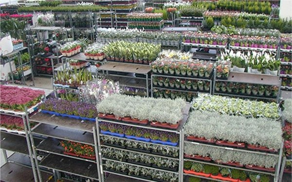 vendita articoli floreali
