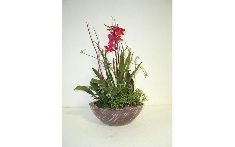 produzione fiori
