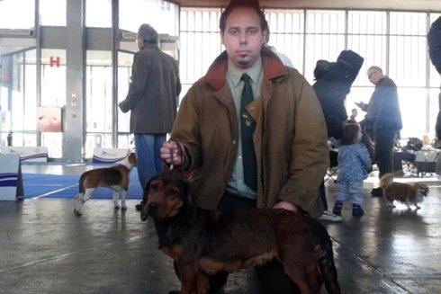 Gli animali del nostro allevamento hanno partecipato a molte gare di livello internazionale.