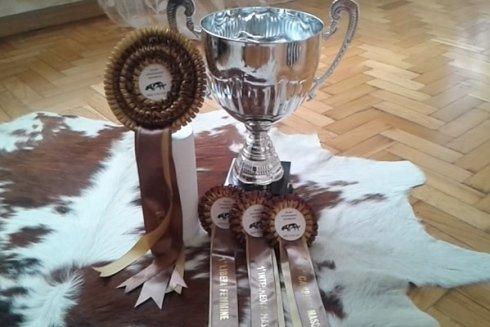 Alcuni premi vinti durante una competizione.