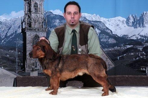Il signor Giorgio Navone e uno dei suoi cani durante una manifestazione cinofila.