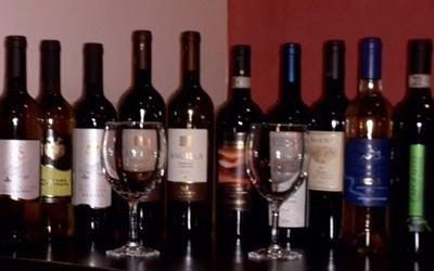 degustazione vini trentini