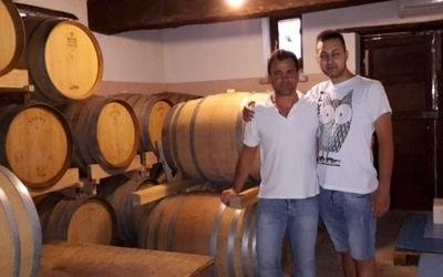 produzione vino roma