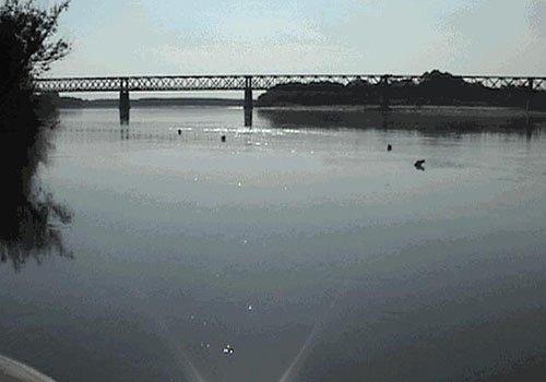 un fiume e un ponte