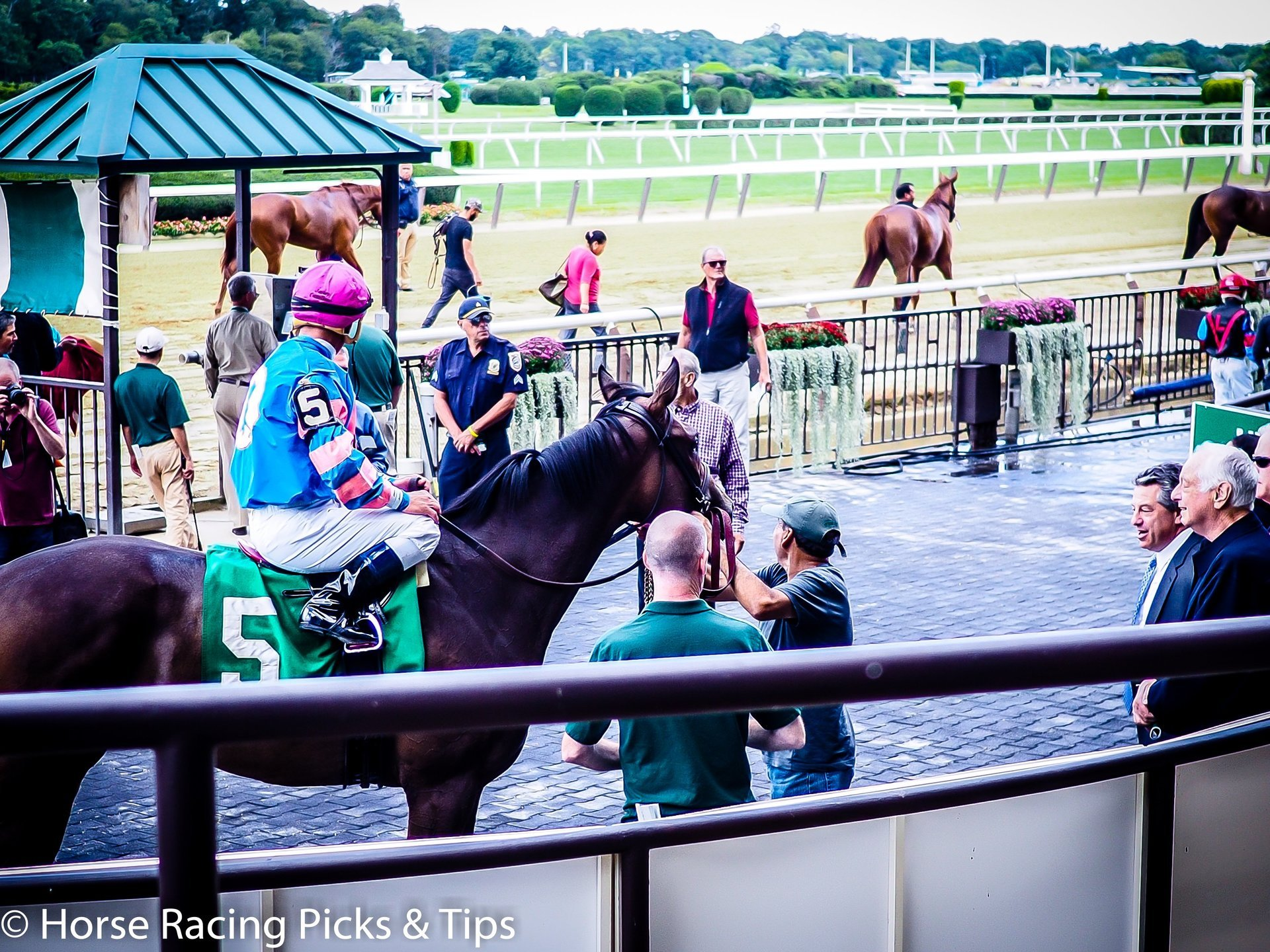 Free horse racing betting tips picks handicapping angles horse racing picks betting tips trainer angles falaconquin
