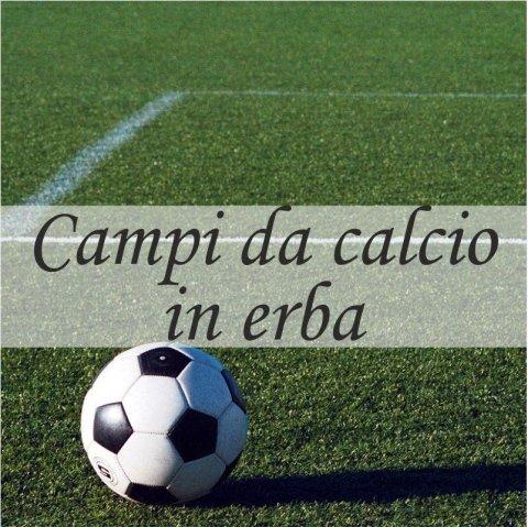 campi da calcio in erba